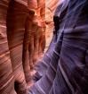 Zebra Canyon Ligh...