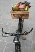 La vieille bicycl...