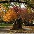 © Donald E. Chamberlain PhotoID# 3196770: Lincoln Statue at Lincoln College in Autumn