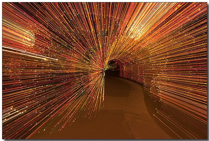 Brookside Gardens - Garden of Light - ID: 3218207 © Thomas  A. Statas