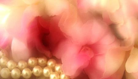 Pearls and Petals