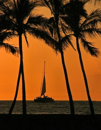 Sailing through Paradise