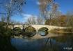 Burnside Bridge (...