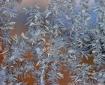 Frozen Fractals