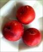 More Red Plums