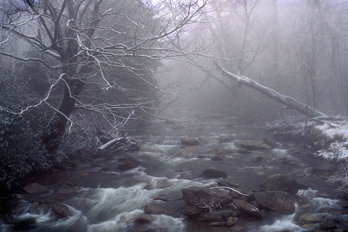 Remnants of Winter - ID: 3654335 © Gary W. Potts