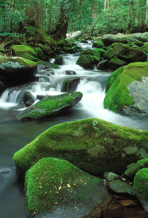 Roaring Fork April - ID: 3654336 © Gary W. Potts