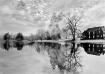 On a Pond