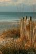 Beach Scene Morni...