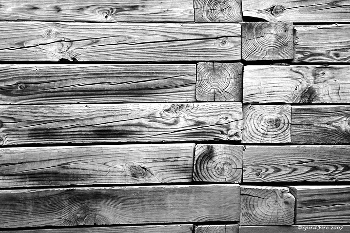 Fence Abstract