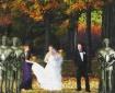 Autumn Wedding in...