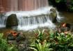 Tiki Falls
