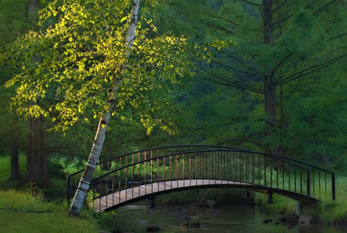 Milham Park Metal Bridge