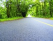 Path to green hea...