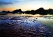 Seal Beach Oregon