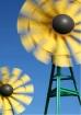 Windmill Motion
