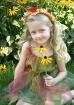 Sunshine Fairy