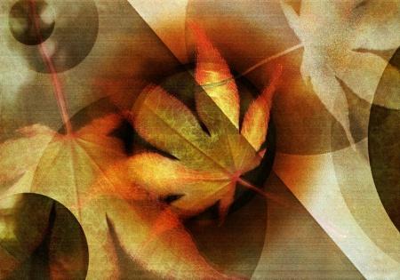 - Autumn Whirl -