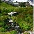 © Patricia A. Casey PhotoID # 4636732: Summerland Trail Mt. Rainier NP