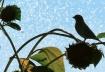 bird in sprinkler