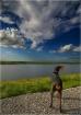 Lake Okeechobee S...