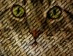 Cat Weave