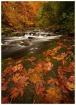 Grist Mill Creek ...