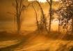 Sunrise in the mi...