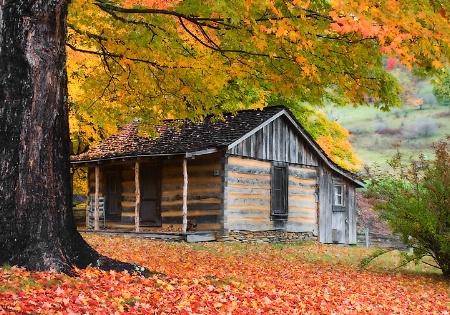 Countryside Cabin