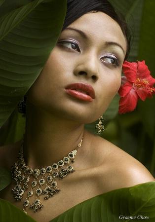 Miss Tropical