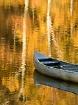 Adrift in Gold