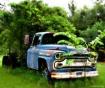 Texas Planter