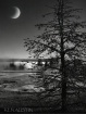 Moon on Yellowsto...