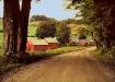 the jenny farm