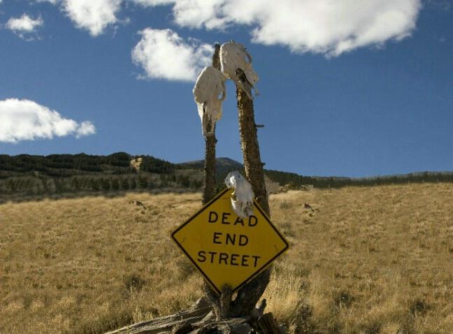 DEAD End Road - ID: 5206609 © Lisa Bianco