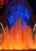 Fountain Like Fir...