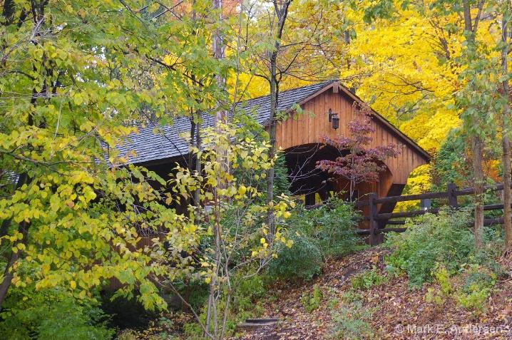 Fall in Olmstead Falls