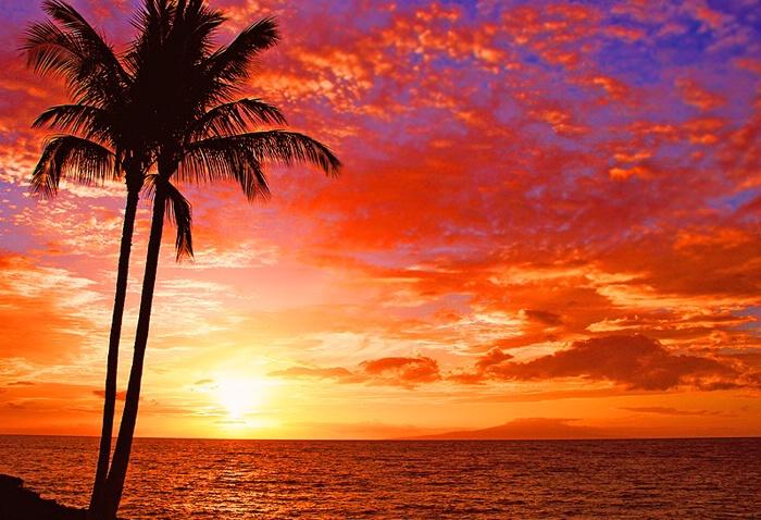 Fiery Sunset - ID: 5356318 © Janine Russell