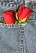 Love in my Pocket