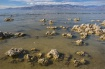 Salton Sea Shorel...