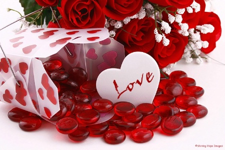 ~The Heart of  Love~