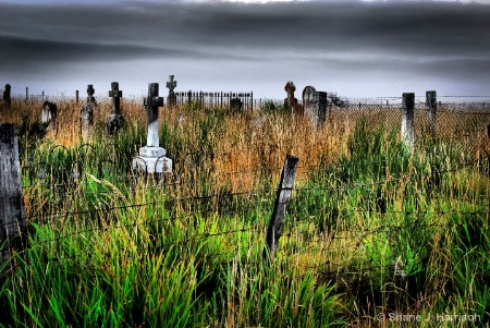 Cullenswood Grave Yard....