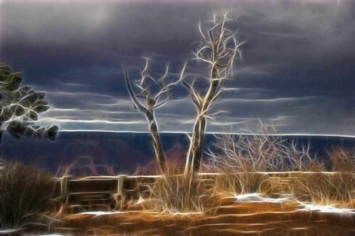 Static Tree - ID: 5776762 © Richard L. Smith