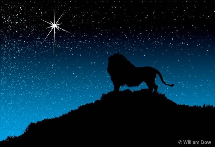 Leo's Star-African lion-Panthera leo - ID: 5792896 © William Dow