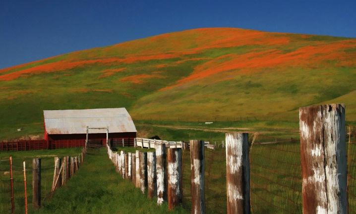 Red Barn - ID: 5860549 © Leslie McLain