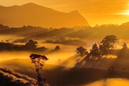 Mountian Through the Mist
