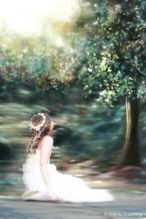 Land Of Dreams - ID: 6063239 © Kim L. Ludwig