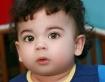 Handsome Little B...
