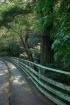 Lagunitas Bridge