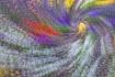 Whirling Pansies